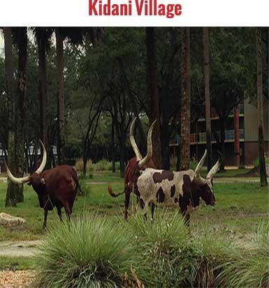 Kidani House